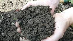 Характеристика почвогрунта