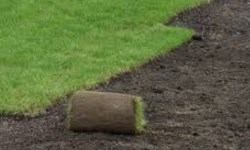 Сферы использования растительного грунта